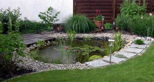 How to make a decorative pond in the yard?