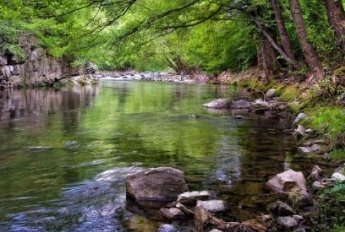 Много се говори за опазване на природата, пречистване на отпадните води, които замърсяват реките и подземните води. Строят се и нови пречиствателни станции , но дали всички осъзнаваме колко ценна е водата за нашия живот!