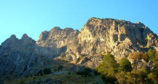 Natural Stone & River Rock Granite Stone Veneer